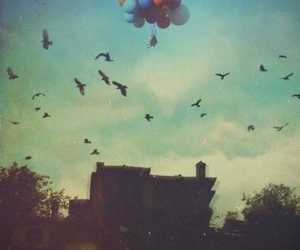 bird, balloons, and sky image