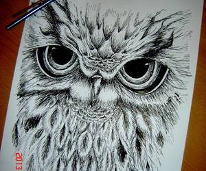 draw and owl image