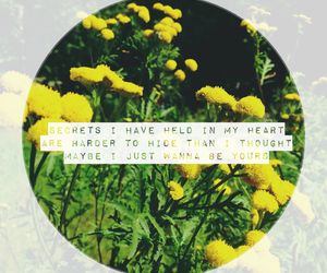 arctic monkeys, quotes, and yellow image