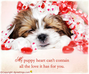 love cute cards image