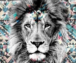 lion, background, and photoshop image
