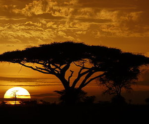 africa, beautiful, and sun image
