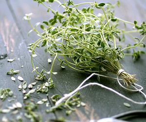 green, herb, and time image