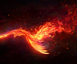 phoenix and fire image