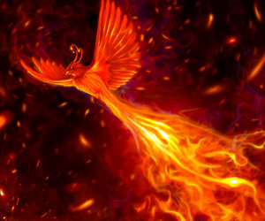 phoenix, fire, and flames image