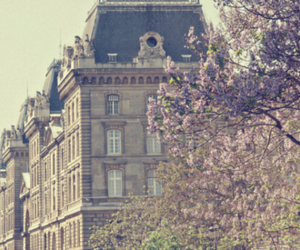 building, flowers, and tree image
