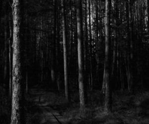 black, landscape, and dark image