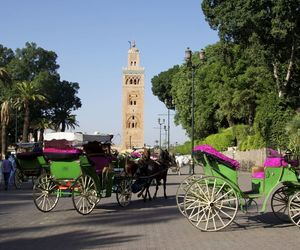 marrakech, studienreisen, and Urlaub image