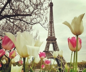 paris, flowers, and eiffel tower image