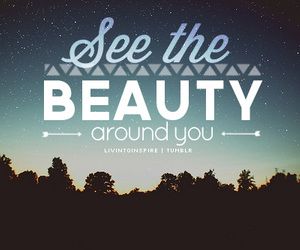 beauty, quote, and night image