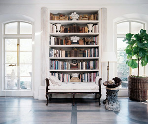 interior and books image
