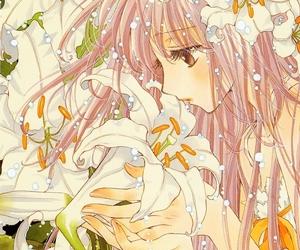 flowers, anime, and kobato image