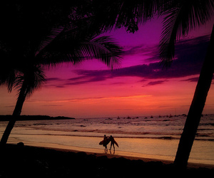 orange, pink, and sunset image