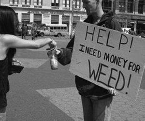 weed, money, and help image