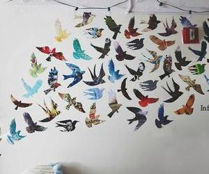 bird, wall, and room image