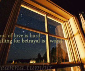 falling in love, window, and struggles image