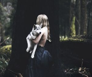 alone, forest, and photography image