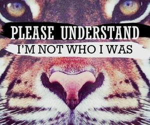 tiger, quote, and understand image