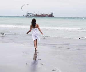 beach, dress, and photography image