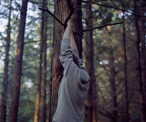 girl, tree, and forest image
