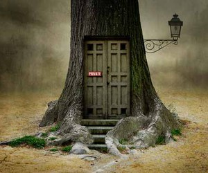 beautiful, cool, and doors image