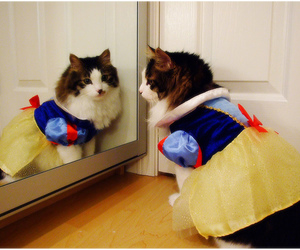 disney, snow white, and cute image