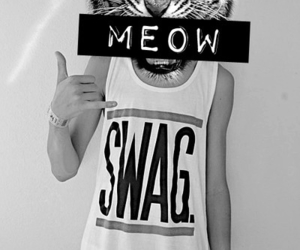 swag, meow, and tiger image