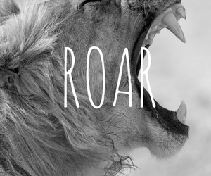 roar, lion, and animal image