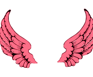 wings, pink, and transparent image