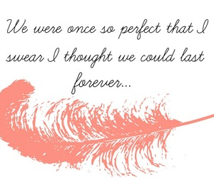 forever, feather, and perfect image