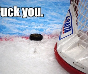 Best, fuck you, and hockey image