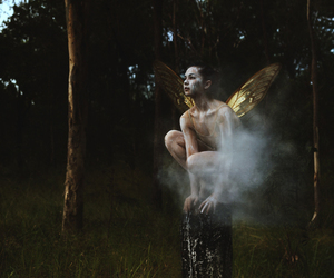 wings and fairy image