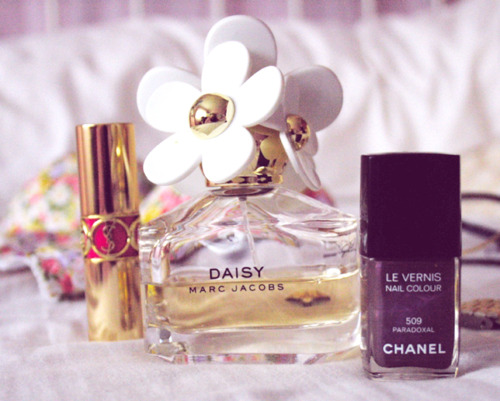 chanel, daisy, and Yves Saint Laurent image