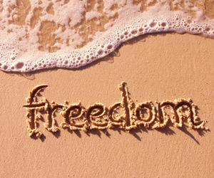 freedom, beach, and sea image