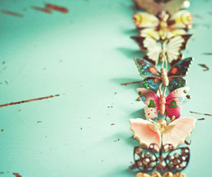 butterfly and vintage image