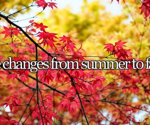 fall and summer image