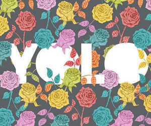yolo, flowers, and live image