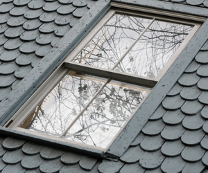 window, nature, and roof image