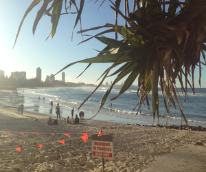 beach, gorgeous, and gold coast image