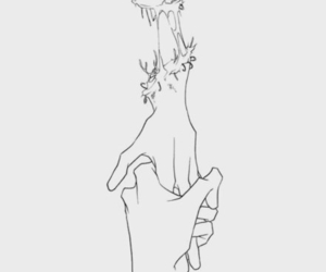hands, love, and nice image