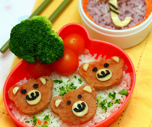 bears, healthy, and rice image