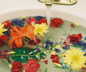 flowers, water, and colors image