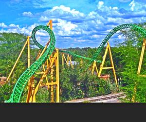 rollar coaster, tropical, and bush gardens image
