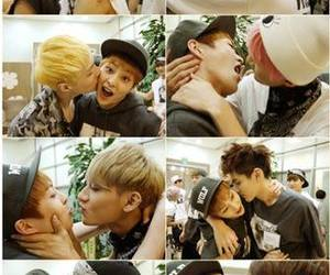 exo, gays, and flower boy image