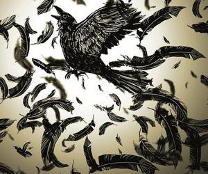 bird, illustration, and crow image