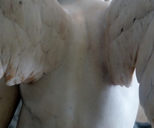 angel, pale, and wings image