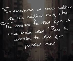 love, fly, and enamorarse image