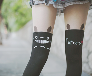 totoro, kawaii, and tights image