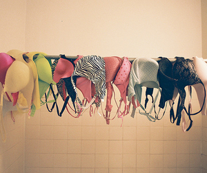 bra and pink image