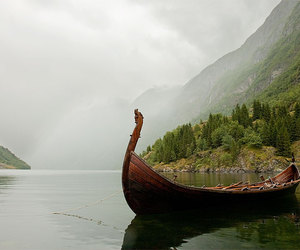 vikings and nature image
